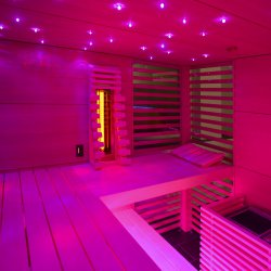 Sauna Ausstellung Baltes Swim Spa Home Trier